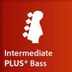 Intermediate Plus Bass Course
