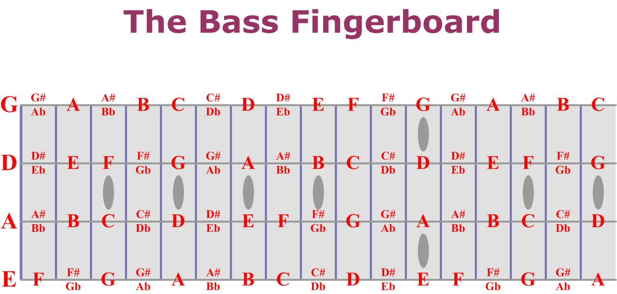 bass fretboard chart. Black Bedroom Furniture Sets. Home Design Ideas